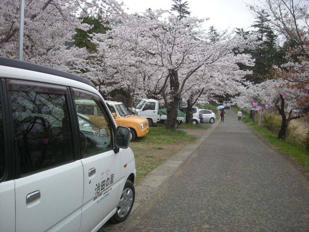 2012/4/22 お花見 治田公園 車1092
